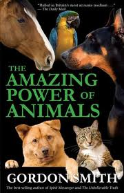 amazing_animals